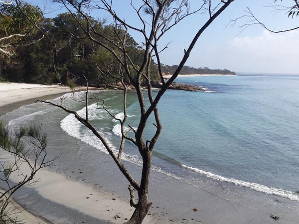 Blenhaim beach