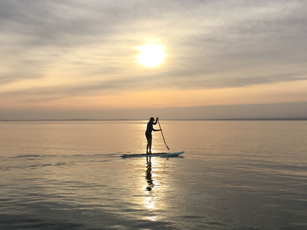 Stand up Paddle